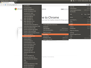 multiple menus to change page encoding in google chrome